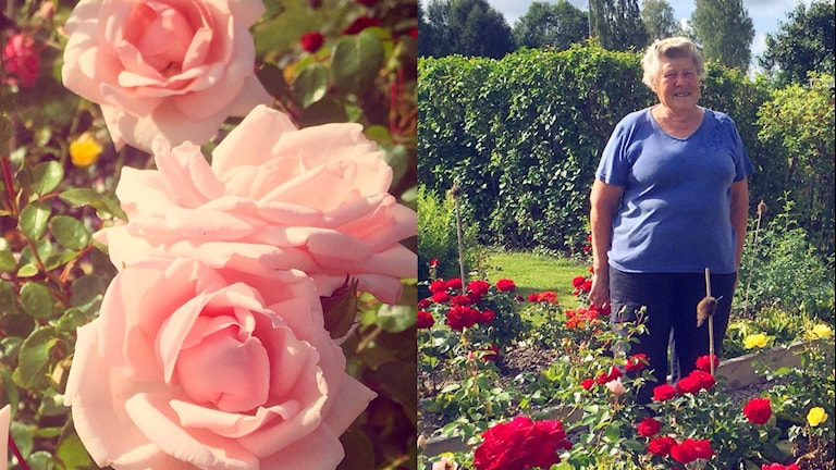 Blommor och Inger Persson.