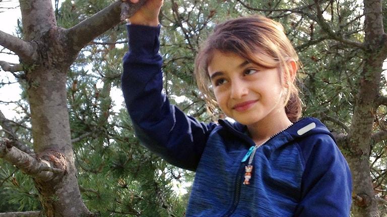 Haiyat Hussein nio år sitter i ett träd