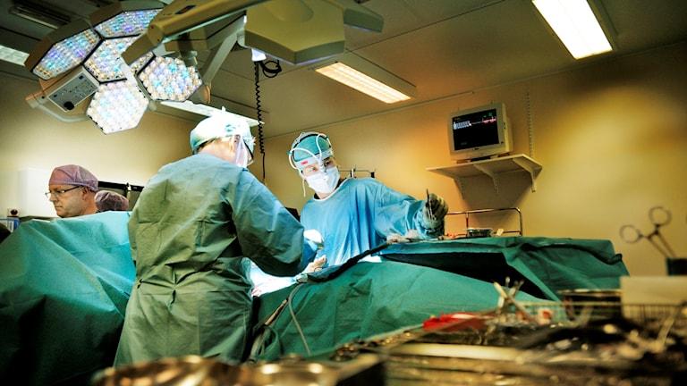 Två läkare i gröna rockar opererar i en operationssal. Foto: Magnus Neideman/TT.