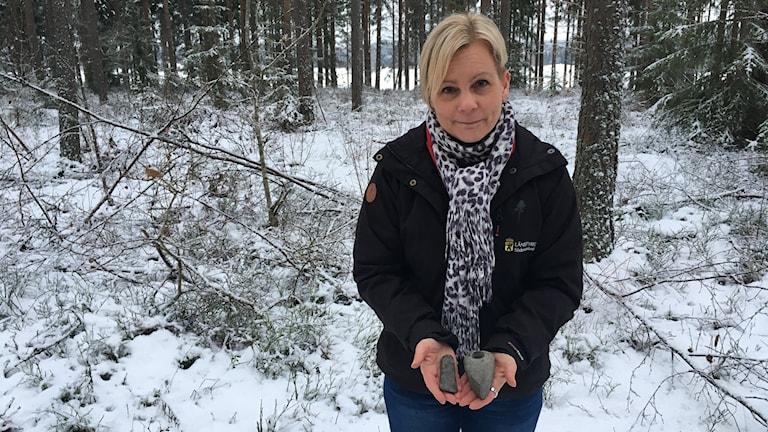 Cecilia Grusmark, antikvarie Länsstyrelsen Sörmland, håller upp på stenåldersyxor av samma kaliber som gömmer sig under marken längs med väg 56, norr om Äs.