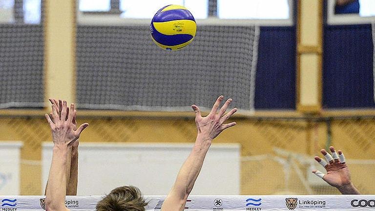 Händer ovanför ett volleybollnät. Foto: Pontus Lundahl/TT.