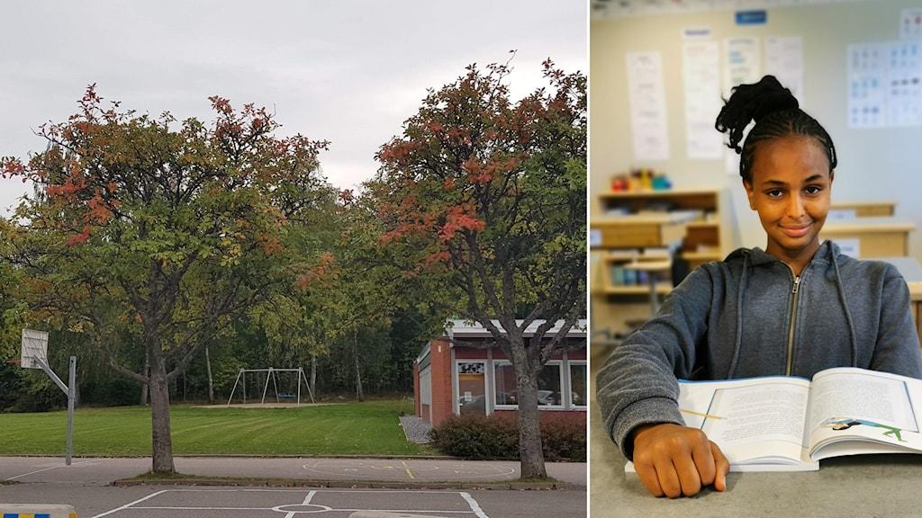 sina går på Skjulstaskolan som är mellanstadiet på Fröslundaskolan.