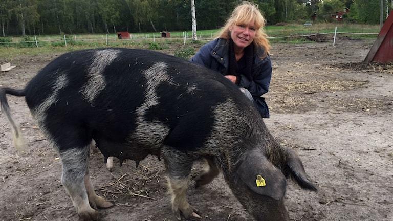 Äppelodlaren Susanne Lundgren med Linderödssvinet Mona-Lisa.