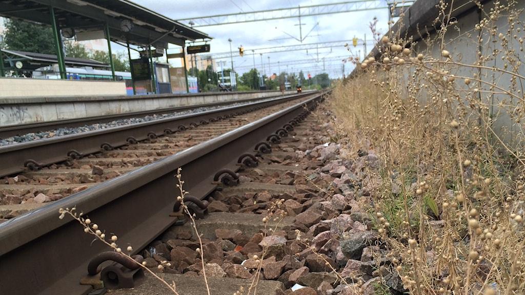 genrebild tåg järnväg spår sj