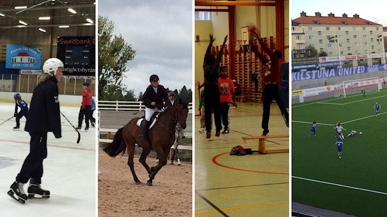 Ishockeyspelare, hästryttare och häst, basketungdomar, fotbollsspelare