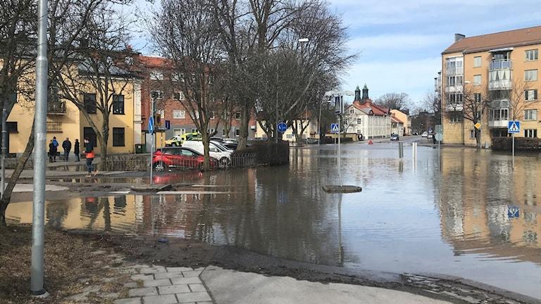 Vattenläcka i vägkorsning. Foto: Fredrik Blomberg/Sveriges Radio.