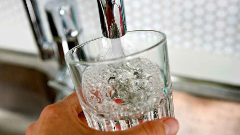 Kranvatten i glas.