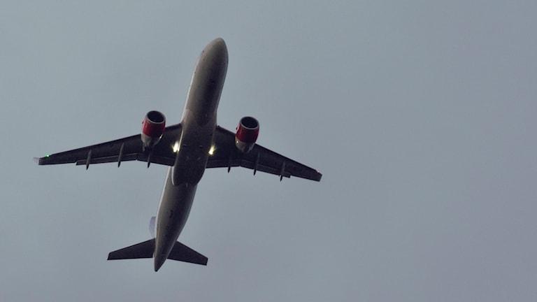 Flygplan flyger