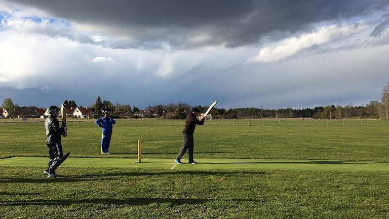 Cricketspelande personer på Balsta IP.