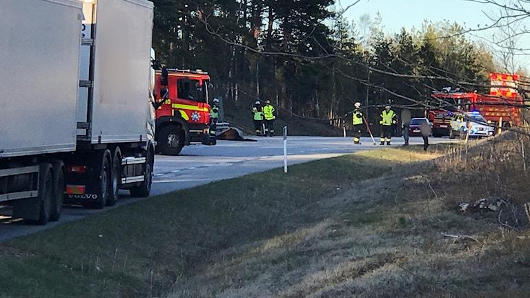 Hästolyckan inträffade på väg 230 mellan Skogstorp och Borsökna i Eskilstuna. Foto: Sebastian Skog.
