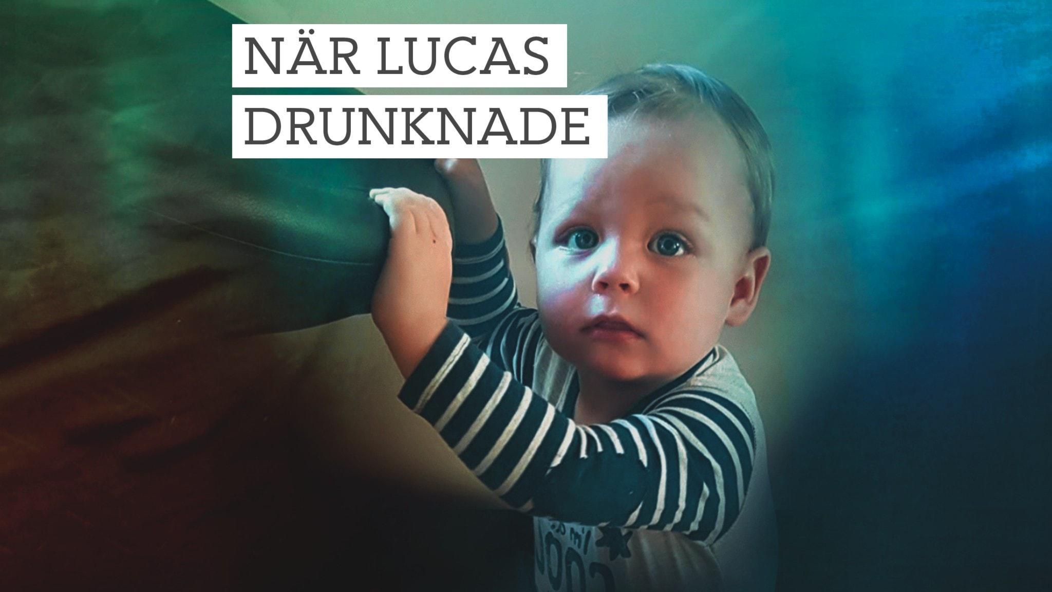 Ett och ett halvtårige Lucas tittar in i kameran