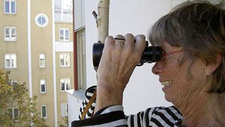 Anita spanar på grannarna.