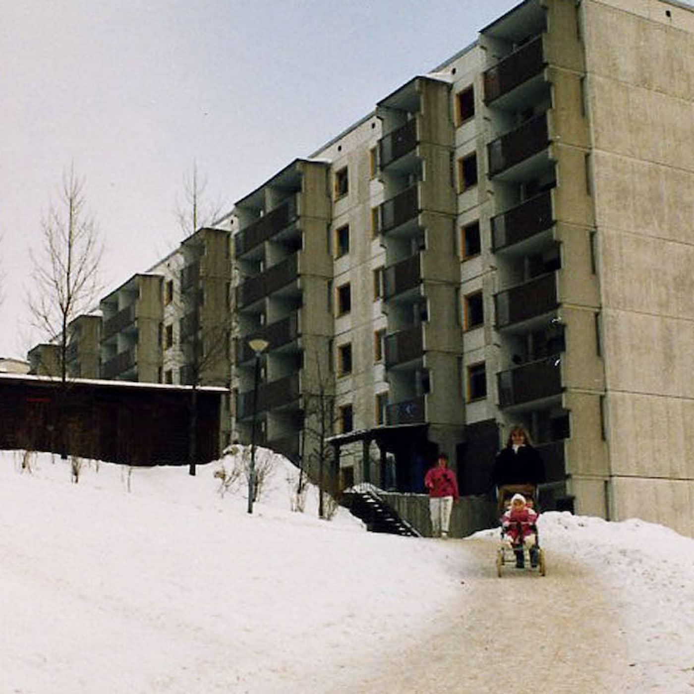 Bilden av Saltskog