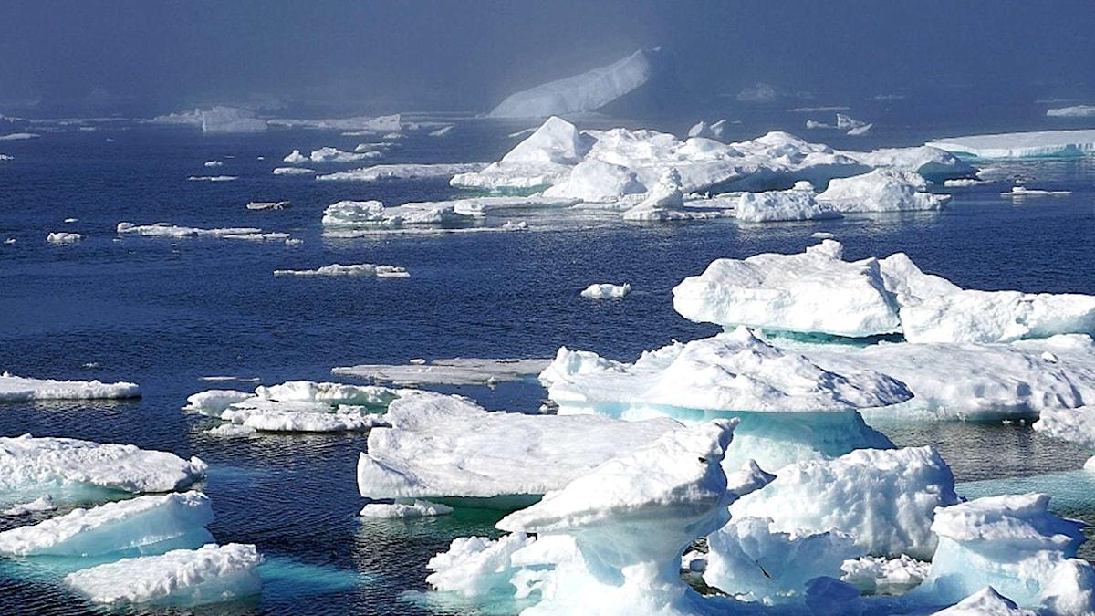 Flygkraschen i Ishavet.