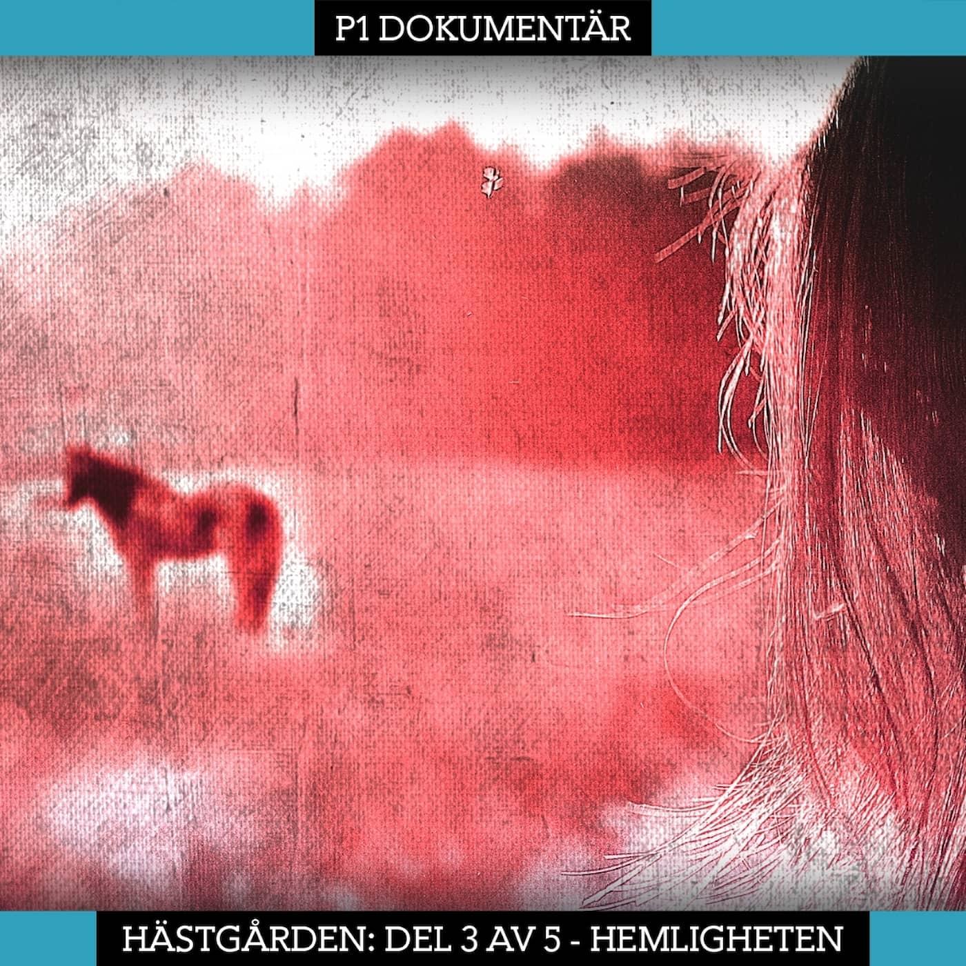 Del 3/5. Hästgården – Hemligheten