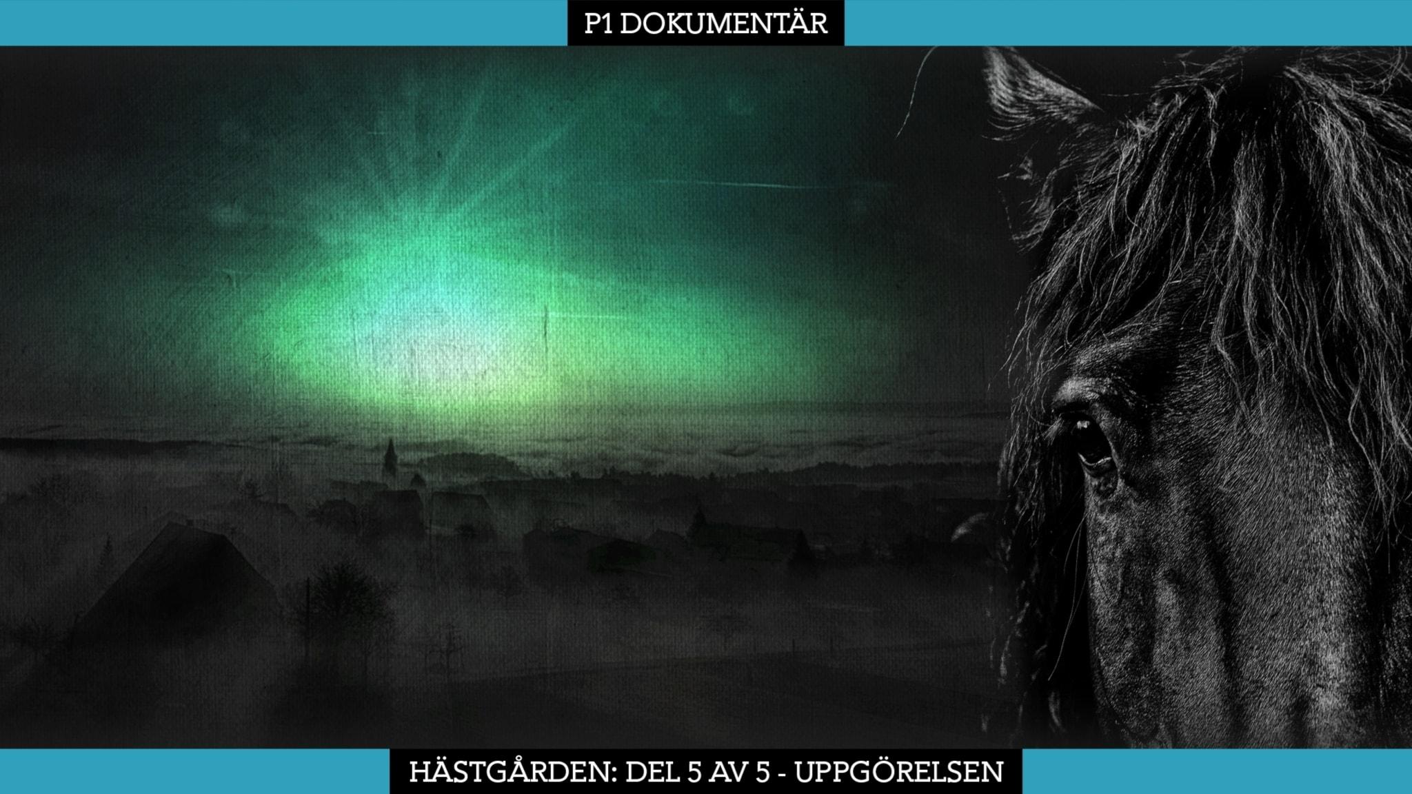 Del 5/5. Hästgården – Uppgörelsen (R)