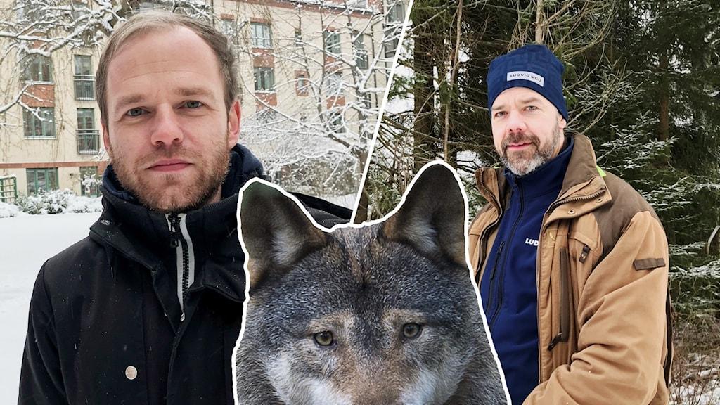 Tvådelad bild. Till vänster en kille med svart jacka och till höger en man med brun jacka och blå mössa som står i en skog.