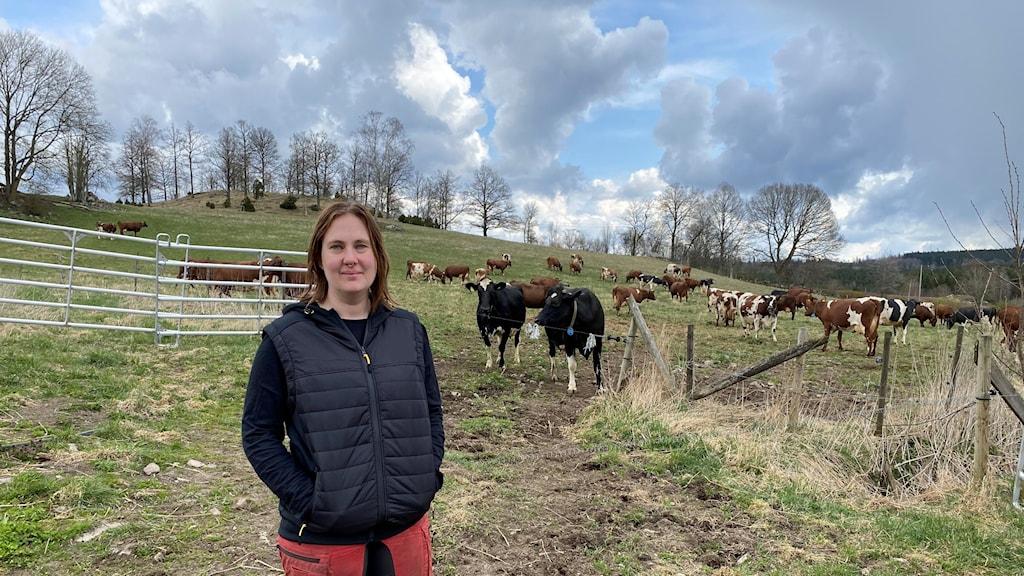 Kvinna står framför hage med kor i.