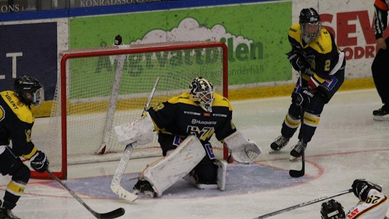 Sabina Eriksson målvakt i HV71.