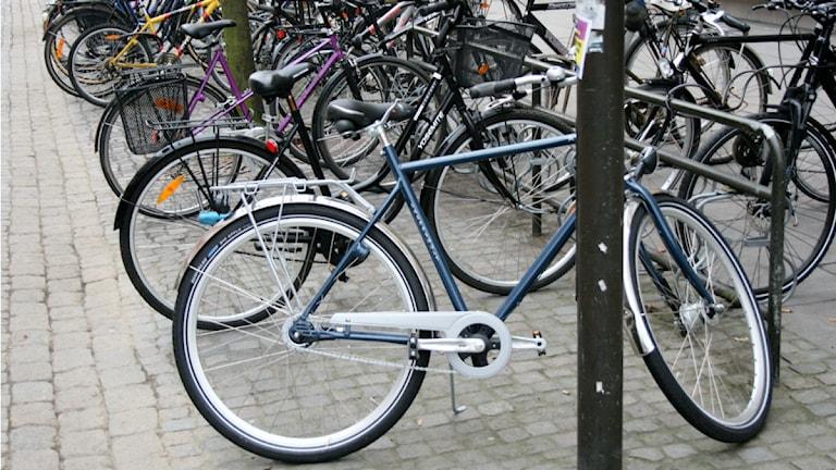 Cyklar. Foto: Ewa Malmsten/Sveriges Radio