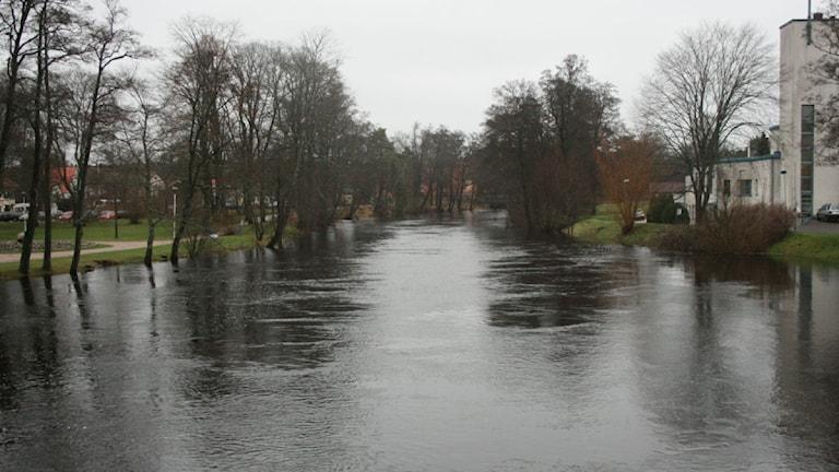 Vattnet står högt som vid en vårflod i Lagan genom Värnamo även idag torsdagen den 15 december. Foto: Ewa Malmsten/Sveriges Radio