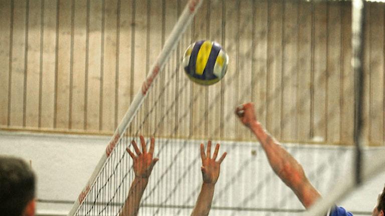 Volleyboll. Arkivfoto: