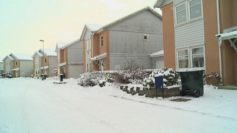 Fuktskadade hus i Svedala. Foto: Anna Eriksson/Scanpix