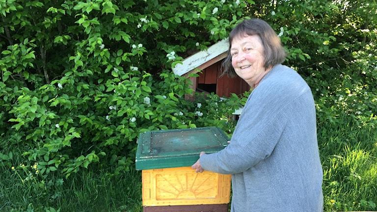 Kvinna står vid en bikupa.