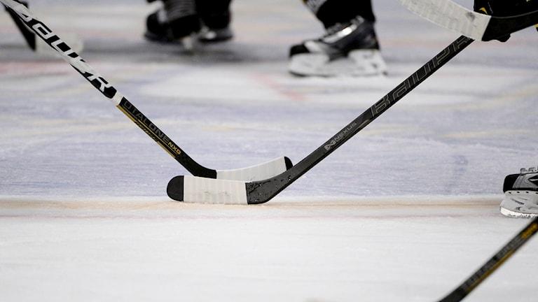 Ishockeyklubbor. Foto: Pontus Lundahl/TT