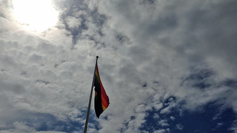 Regnbågsflagga. Foto: David Westh/Sveriges Radio