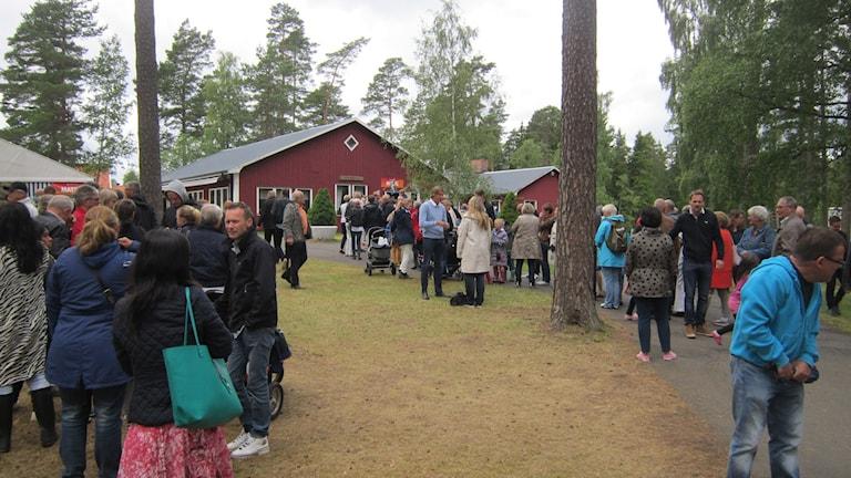 Köer till matställe på Nyhemsområdet. Foto: Oskar Mattisson/Sveriges Radio.