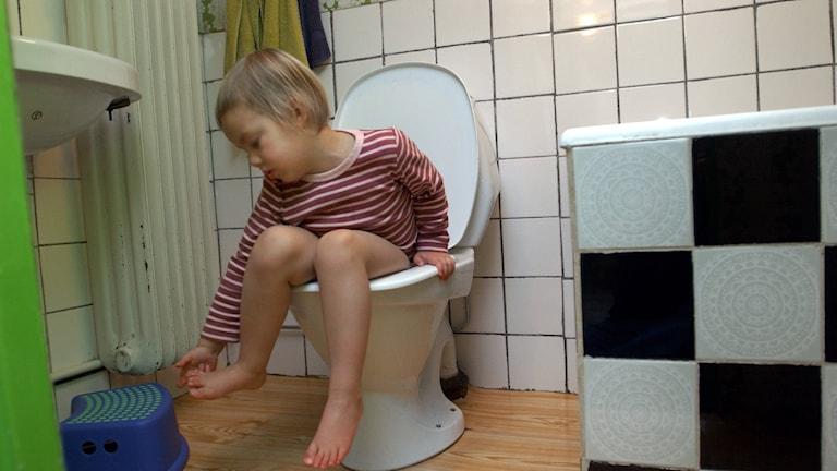 Barn på toalett. Arkivbild, foto: Fredrik Sandberg/TT
