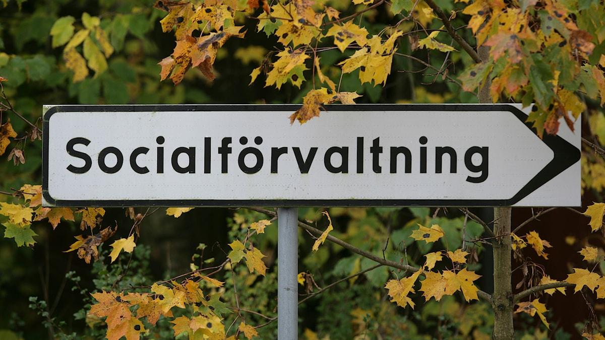Socialtjänsten, skylt. Foto: Fredrik Sandberg/TT