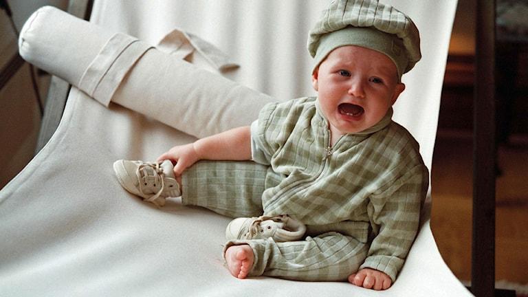 Bebis. Arkivbild, foto: Jack Mikrut/TT
