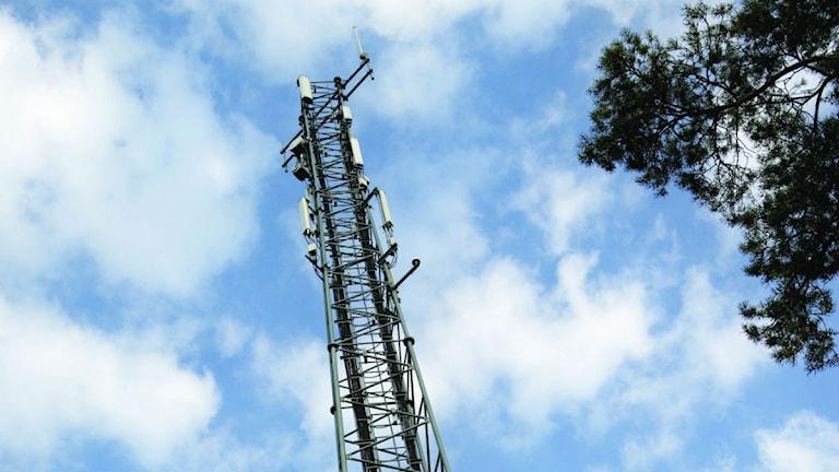 Telefonmast mot blå himel