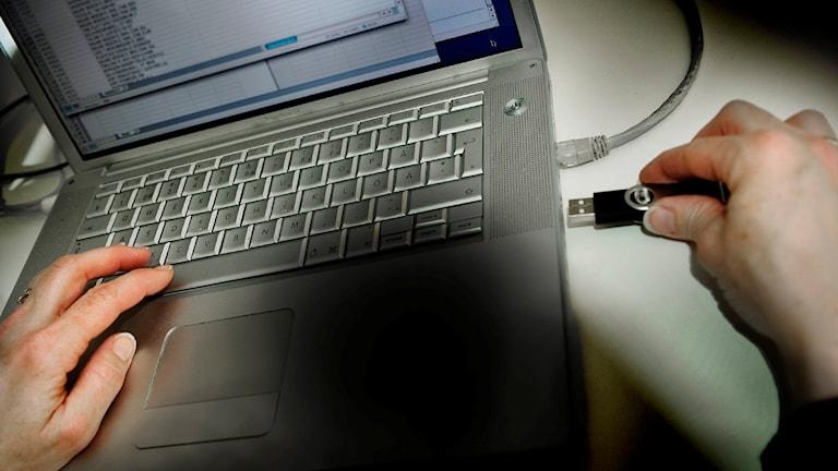 Ett USB-minne med tiotusentals IS-krigare har läckts till media. Foto: Markus Dahlberg / TT