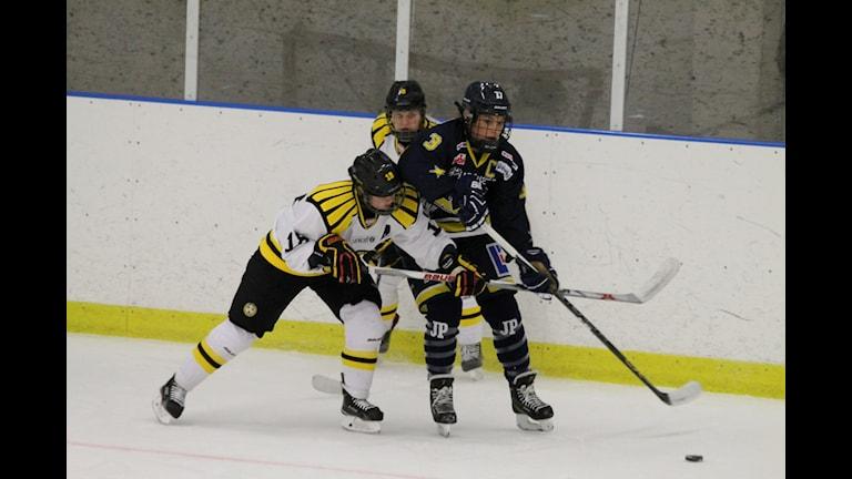HV71 dam får möta Linköping i kvartsfinal