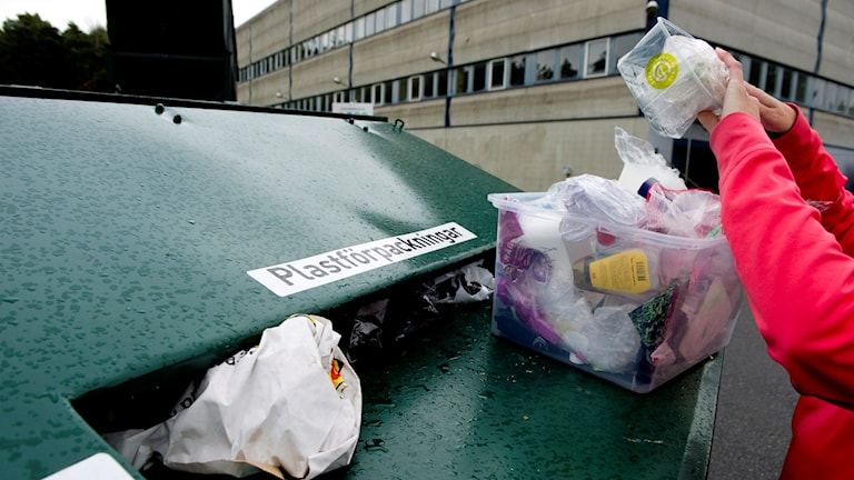 Plastinsamling. Foto: Pontus Lundahl/TT