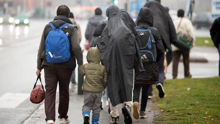 Flyktingar. Foto: Drago Prvulovic / TT