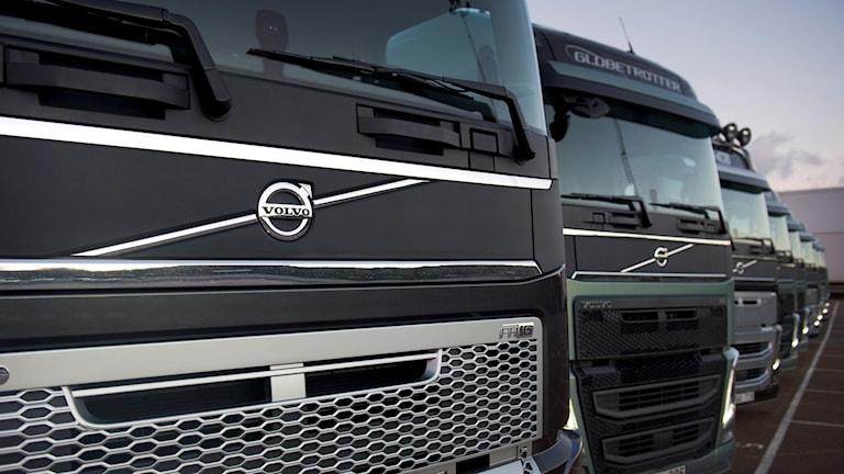 Volvolastbilar. Foto: Björn Larsson Rosvall/TT