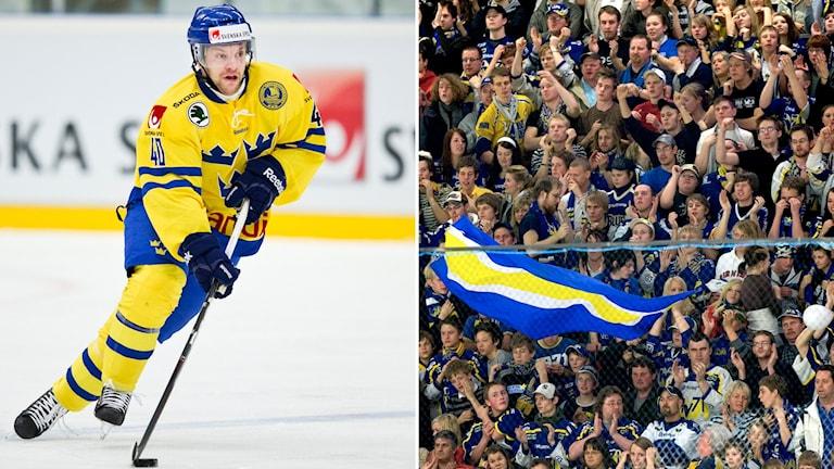 Pär Arlbrandt och publik. Foton: Andreas Hillergren/TT och Björn Larsson Rosvall/TT
