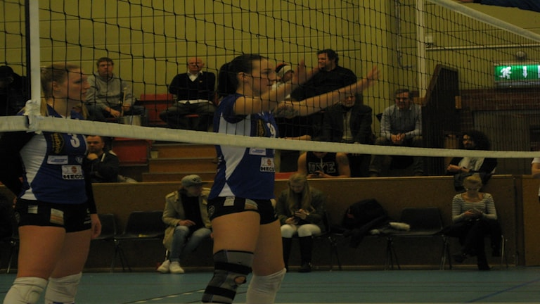 Gislaveds Volley