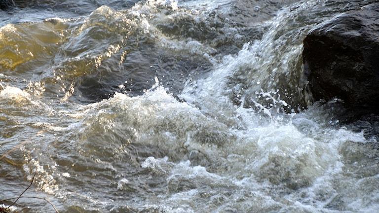 Vårflod. Foto: Staffan Almquist/TT