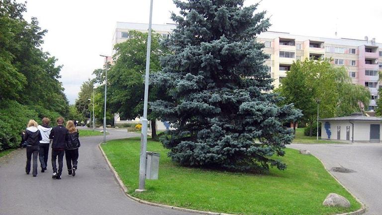 Bostadsområdet Råslätt.