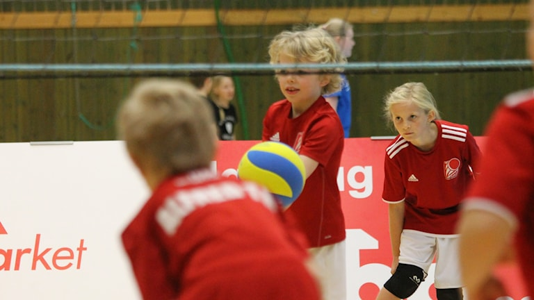 Volleyboll, kidsvolley