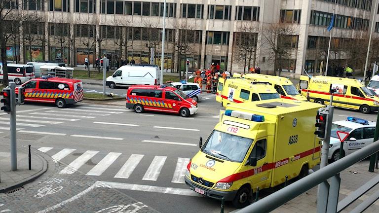 Bryssel terror