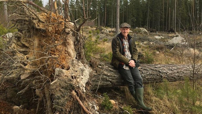 Joakim Norgren