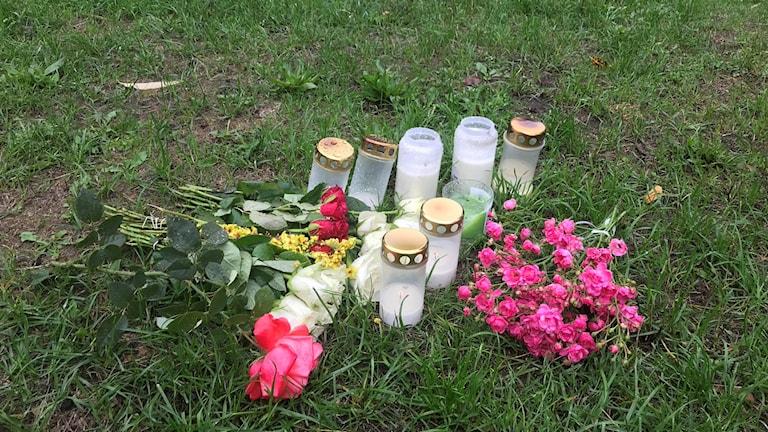 Fotot visar ljus och blommor i Smedbyparken.