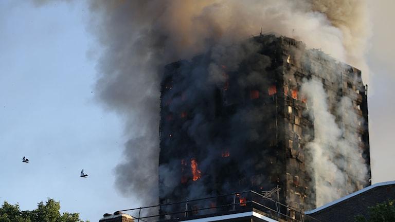 Brand i höghus i London.