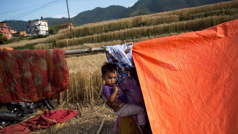 Ett barn i ett tält vid en åker i Nepal.